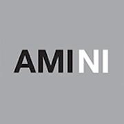 AMINI-150