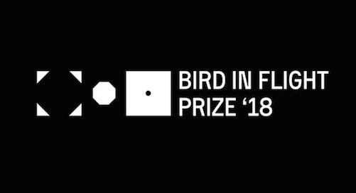 Open Call | Bird in Flight Prize 2018, Ukraine (Submission Fee)