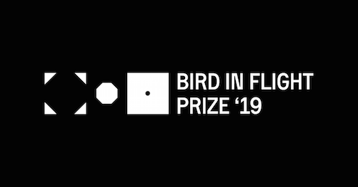 Open Call | Bird in Flight Photography Prize '19, Kyiv, Ukraine (Submission Fee)