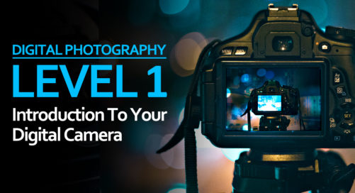 Level 1: Introduction To Your Digital Camera with Belfast Exposed