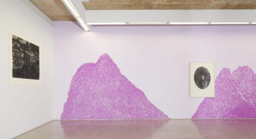 Episode 5: Gary Coyle 'Dreaming Different Dreams' at Kevin Kavanagh Gallery