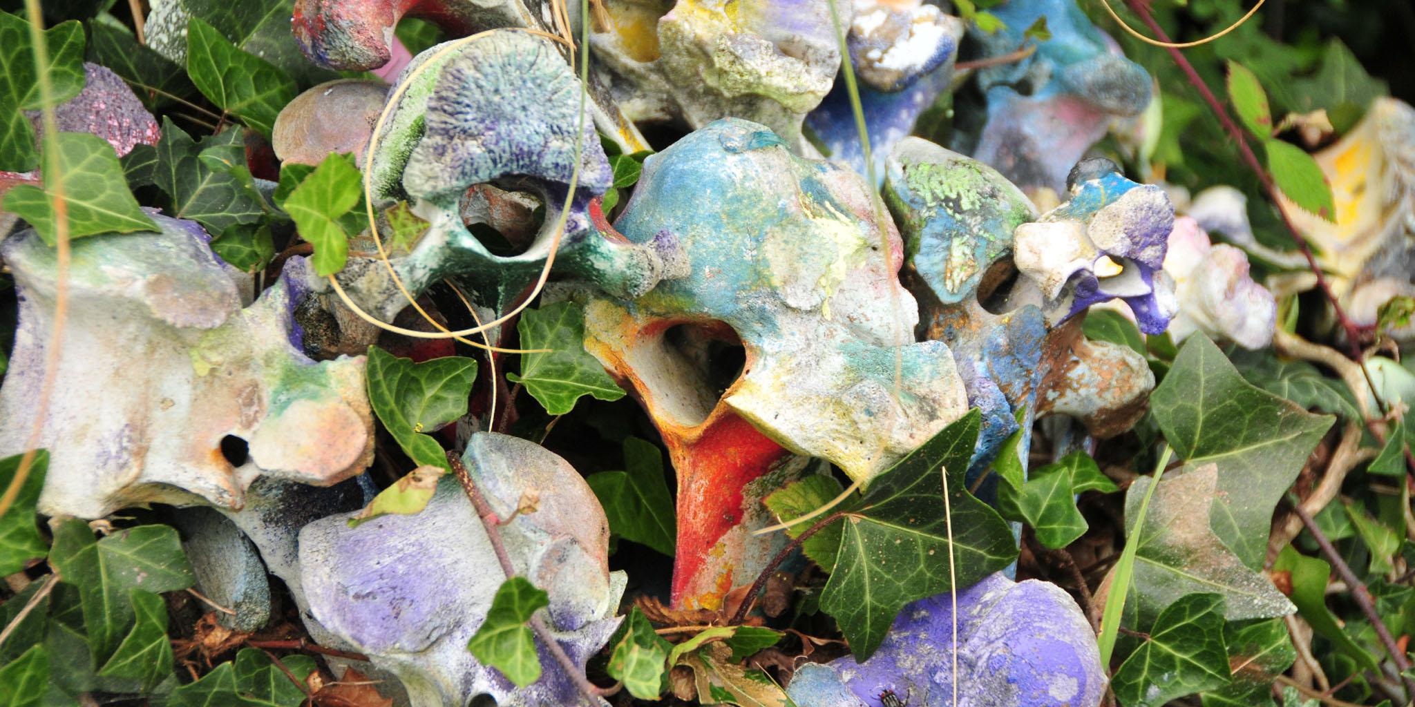 Gallery as Garden | Joan Davis at Mermaid Arts Centre, Bray
