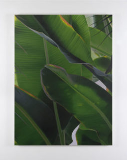 Stuck on dawn | Marcel Vidal at Kerlin Gallery, Dublin