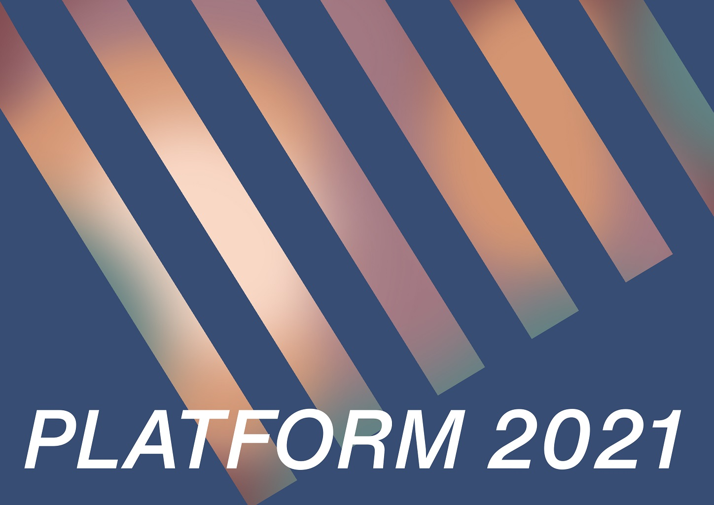 PLATFORM 2021 - Worlds of Their Own | Group Show at Draiocht Blanchardstown