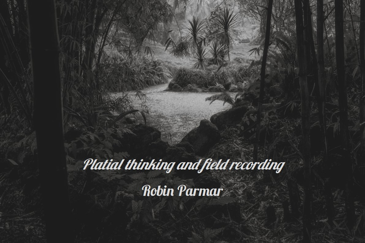 Platial Thinking and Field Recording | Online discussion with Robin Parmar
