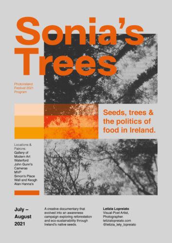 Sonia's Trees   Letizia Lopreiato Solo Exhibition at Gallery of Modern Art Gardens, Waterford