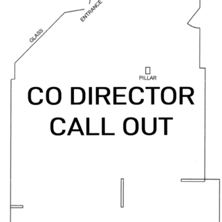 Volunteer Position   Co-Director Call Out for Platform Arts, Belfast (Unpaid)