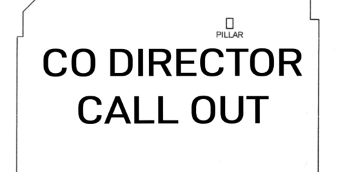 Volunteer Position | Co-Director Call Out for Platform Arts, Belfast (Unpaid)
