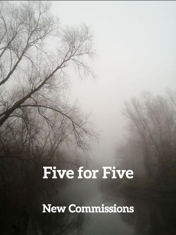 Five for Five: New Commissions   Group Show at Flax Project Space, Belfast